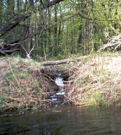 Река Ворона, Тамбовская область, ручей