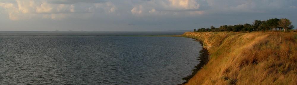 Плотина на р Цне в Тамбовском лесхозе if you travel  Поиск