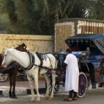 Фаэтон - луксорское конное такси