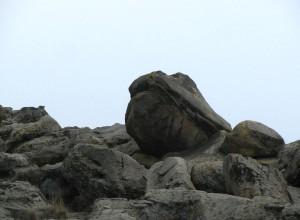 Каменная могила. Мелитополь. Бегемот.