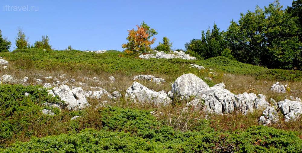 Чатыр-Даг, сад камней