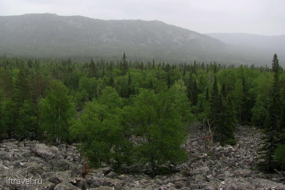 Таганай, Урал, курумник