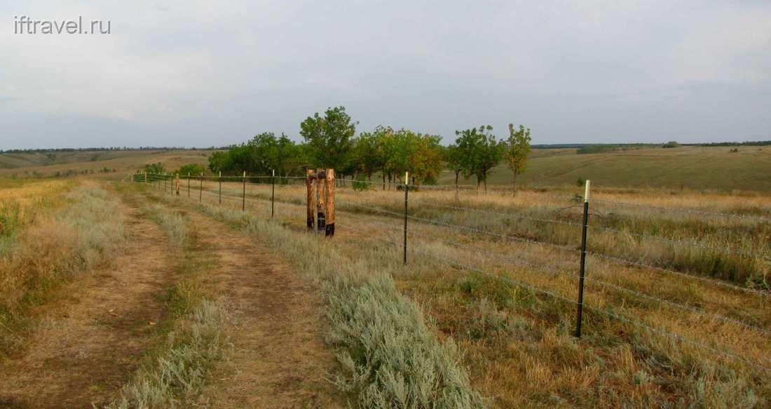 Непонятный забор среди поля
