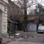 Белый голубь в дворике