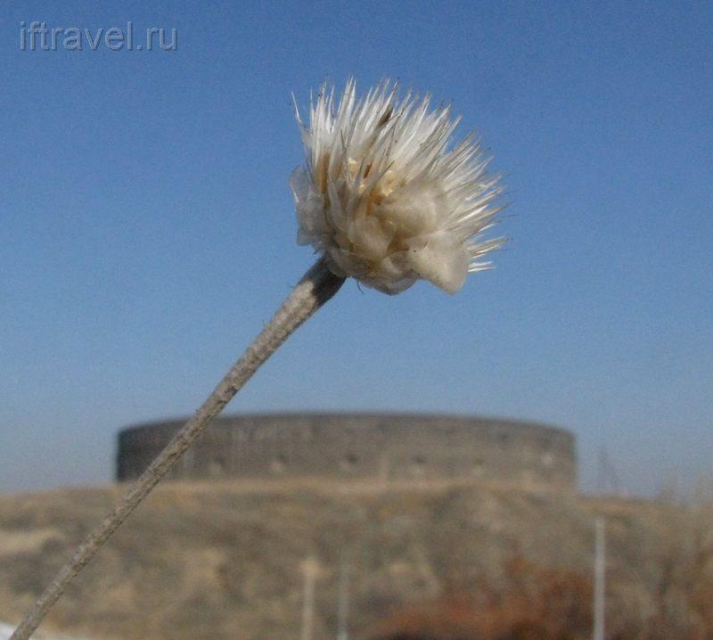 Черная крепость, Гюмри, Армения