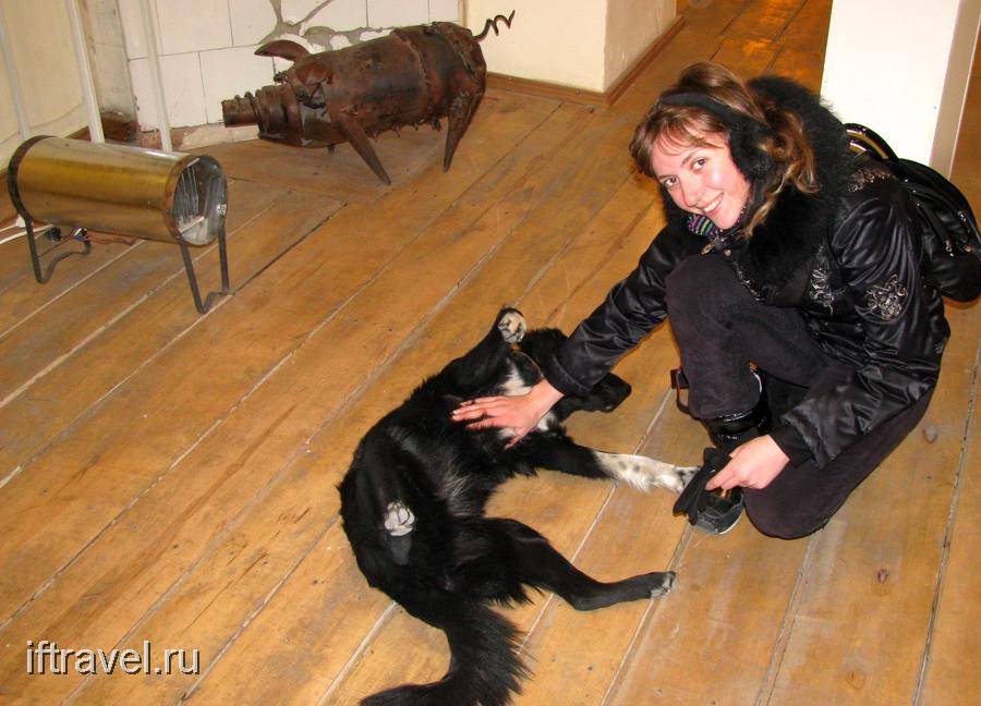Юля, свинка и собачка