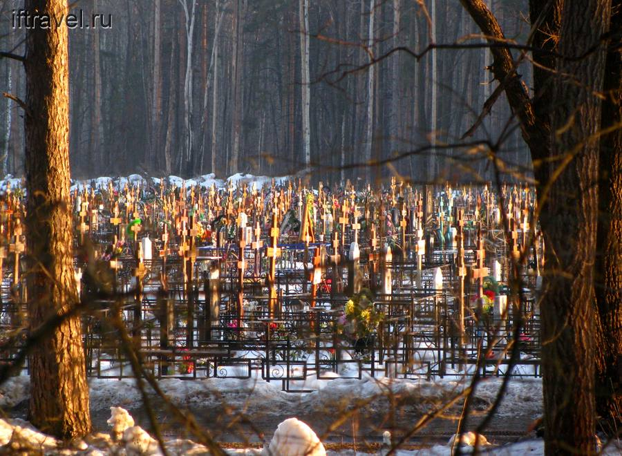 Кладбище г. Котовска