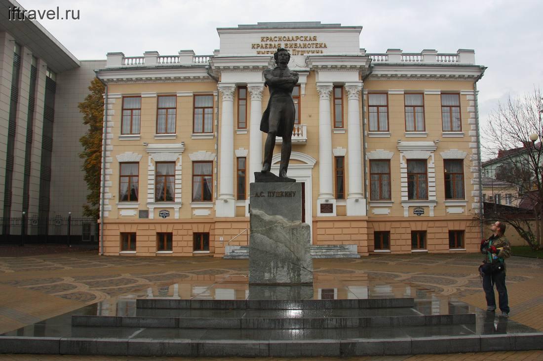 Александр Сергеич на фоне библиотеки