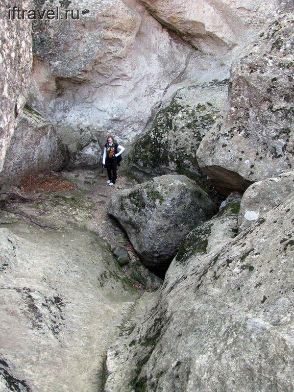 Среди камней