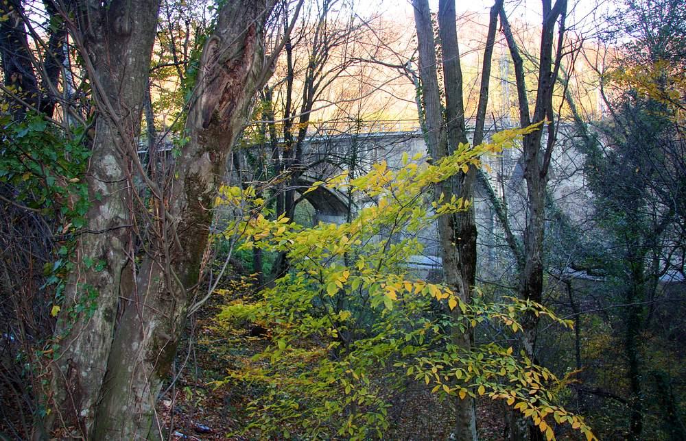 Железнодорожный мост, вид с тропы