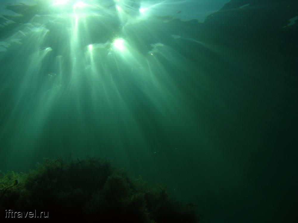 Блики на воде: вид снизу