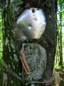 Мемориальные таблички, поглощаемые деревом