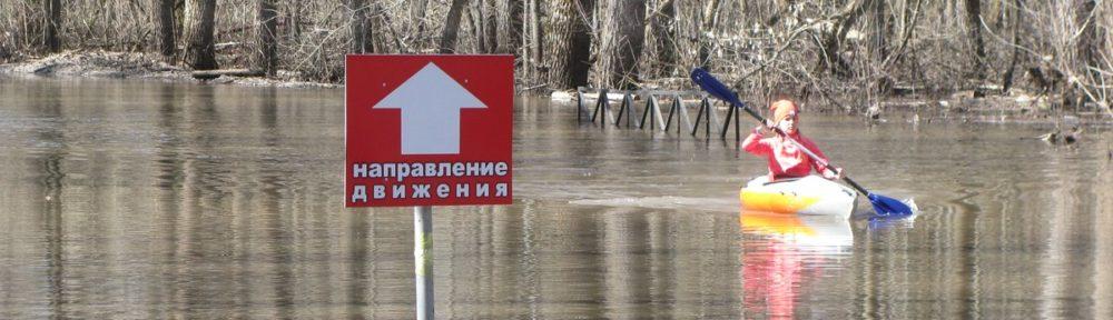 По затопленному парку, или Тамбовский потоп 2018