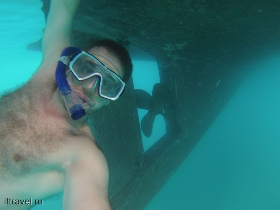 С большим подводным приветом
