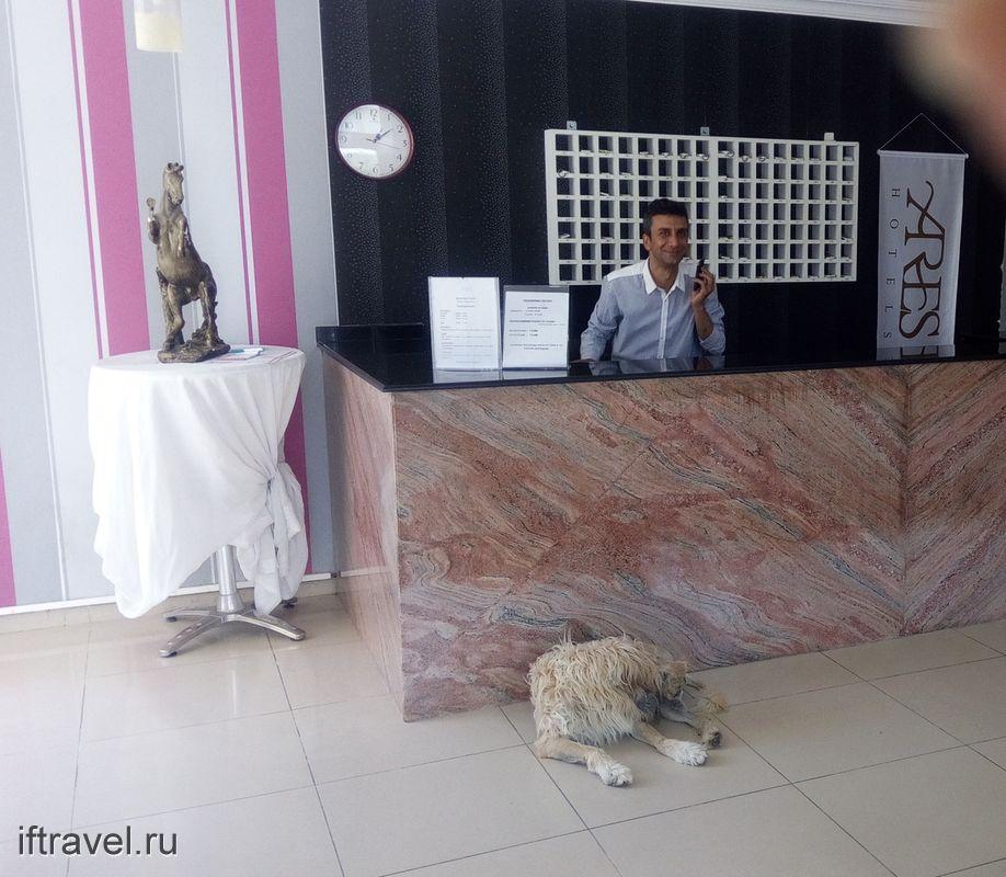 Отель Ares***, Кемер