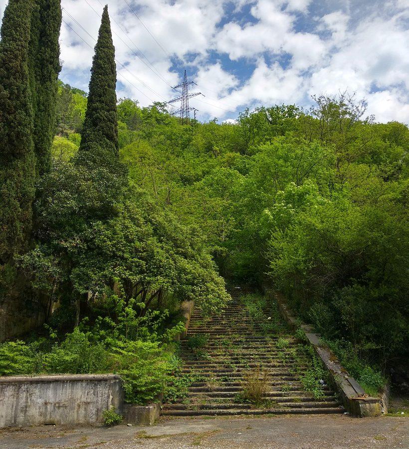 Заросшая лестница в Гагре
